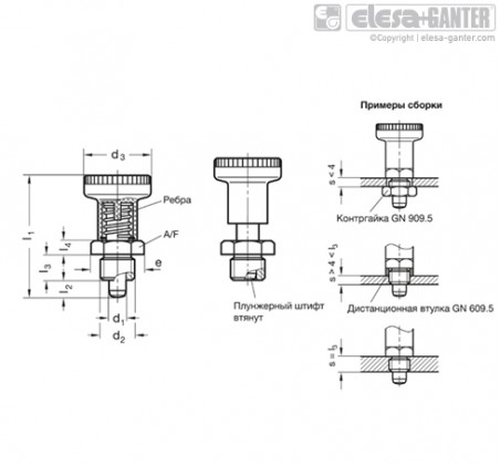 Штифты стопорные (фиксаторы) GN 607.1-NI – Чертеж 1