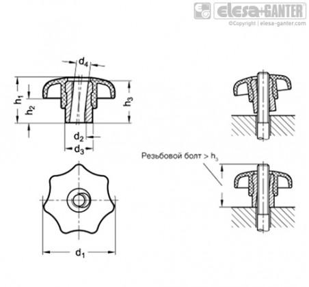 Быстросъемные лепестковые ручки GN 6336.3-NI – Чертеж 1