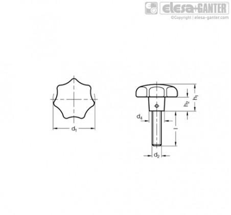 Барашковые поворотные ручки GN 6336.5-AP – Чертеж 1