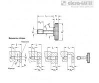 Винты с насечкой GN 653.2-NI – Чертеж 1