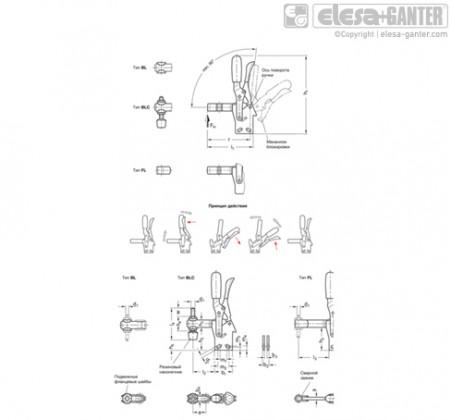 Вертикальные прижимы GN 810.4-NI – Чертеж 1